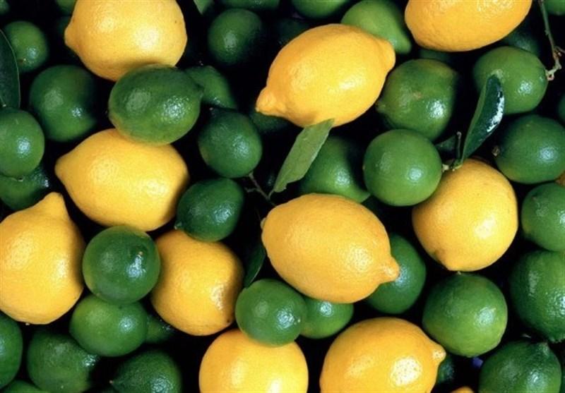 صادرات لیموترش و لیموشیرین ممنوع شد +سند