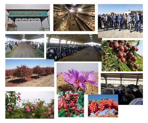 حمایت ۷۰ میلیاردی بانک کشاورزی از احداث کشت و صنعت در منطقه مرزی