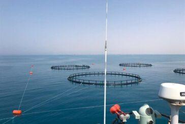 حمایت۱۰۰میلیاردی بانک کشاورزی از طرح پرورش ماهی در استان بوشهر
